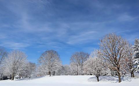 青空に雪景色が映えるあずさ公園で