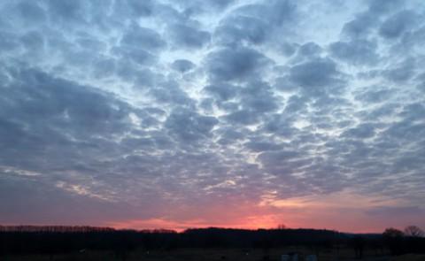 ヒツジ雲とたわむれるリス