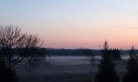 シーズン初の朝霧風景