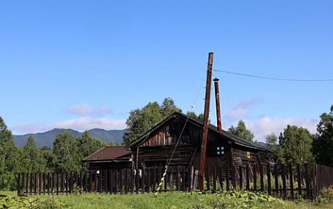 三股の廃屋と白樺林