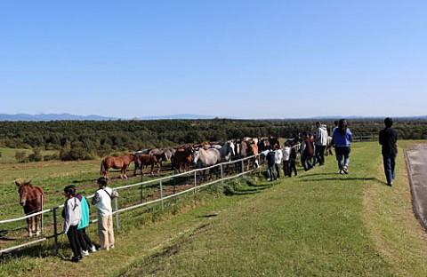 修学旅行生で賑わう十勝牧場