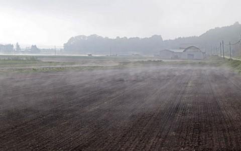 走行中に写した地霧