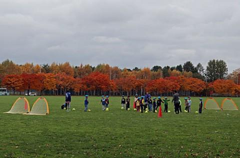 紅葉のグリンパークで楽しむ子供達