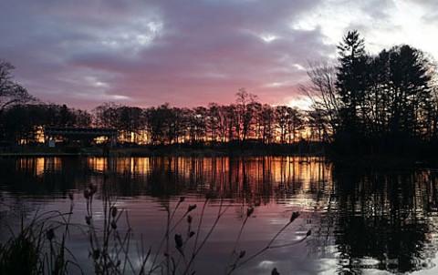 朝陽が差し込む緑ヶ丘の池