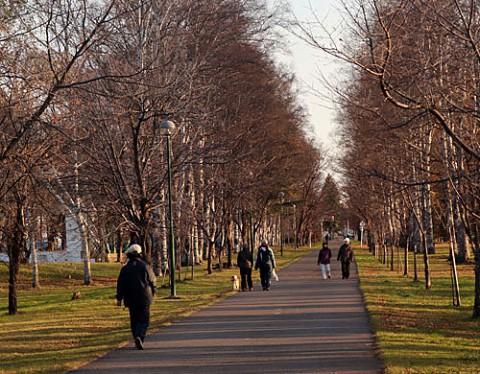 朝の散歩には絶好の緑ヶ丘公園