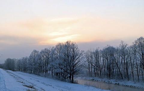 帯広川の霧氷と白鳥