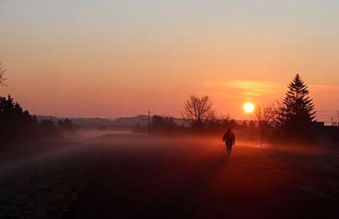 シーズン最後の朝霧風景