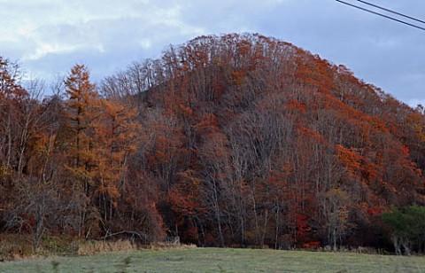 音別の山の晩秋