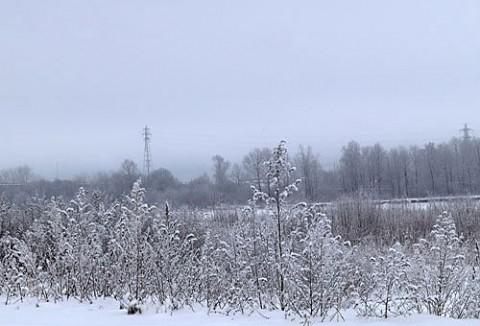 雪景色を写すのも飽きました