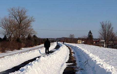 きれいに除雪された堤防遊歩道