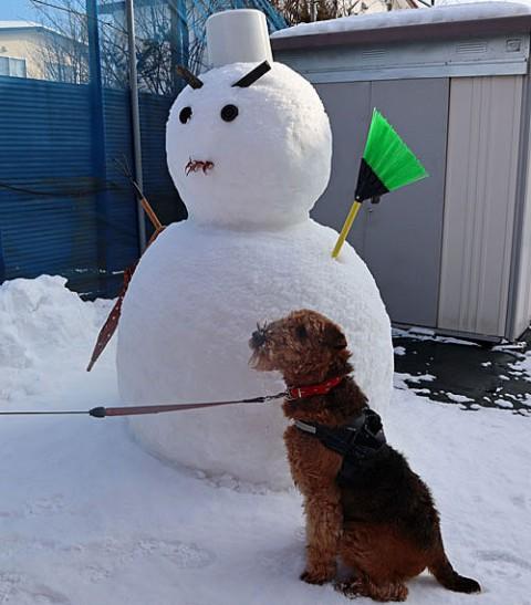 エルとお隣の雪ダルマ