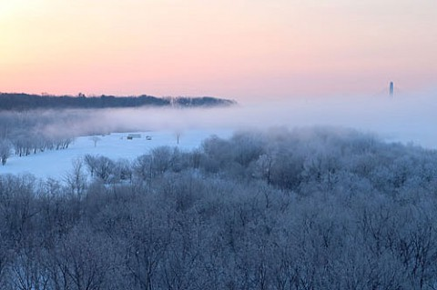 最後になるかも霧氷風景