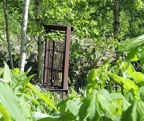 熊の捕獲檻が設置された山