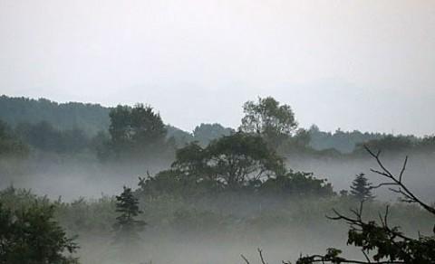 十勝川河川敷の朝霧