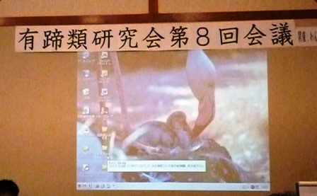 第8回有蹄類研究会