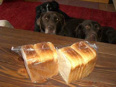 あさひやの「普通の食パン」