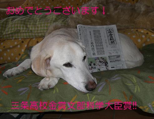 三条高校合唱部 金賞 文部科学大臣賞!!