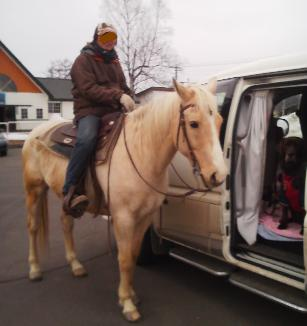乗馬です~