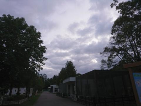 嵐の前の・・・・