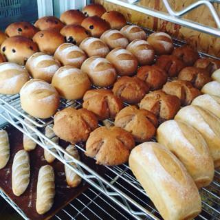 3月21日 本日のパン