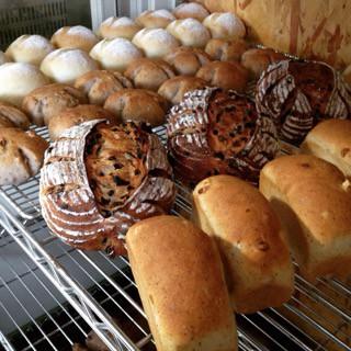 8月1日 本日のパン