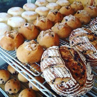 8月8日 本日のパン