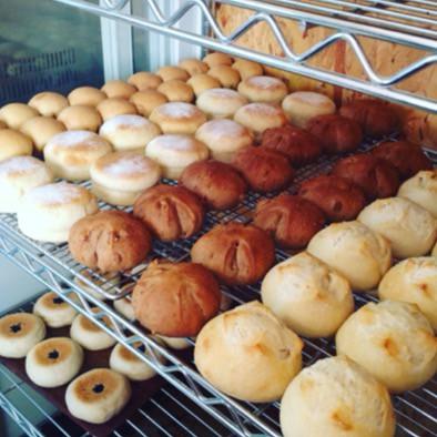 1月13日 本日のパン