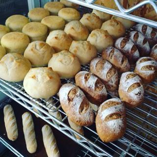 3月9日 本日のパン