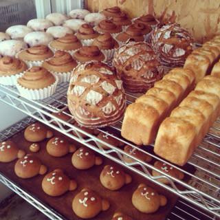 4月20日 本日のパン