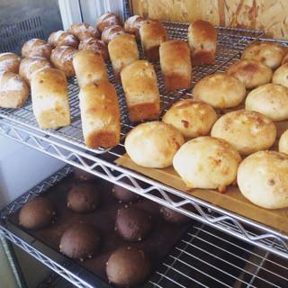5月11日 本日のパン