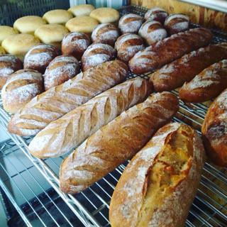 6月1日 本日のパン