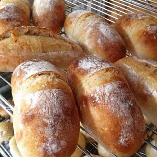 8月31日 本日のパン