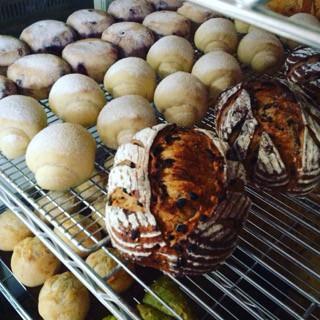 9月4日 本日のパン