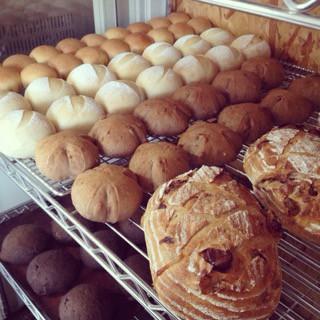 10月16日 本日のパン
