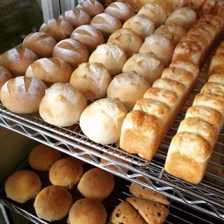 11月9日 本日のパン
