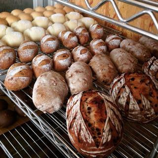 12月28日 本日のパン