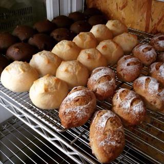 6月14日 本日のパン