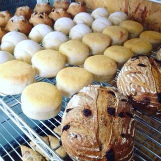 7月2日 本日のパン