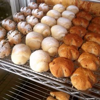 8月9日 本日のパン