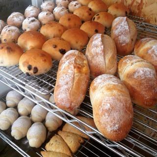 9月13日 本日のパン