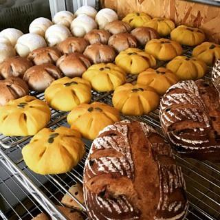 11月8日 本日のパン