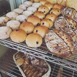 11月26日 本日のパン