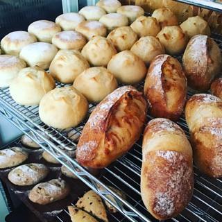 11月29日 本日のパン