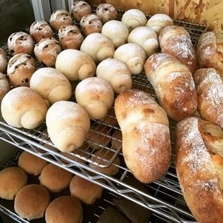 12月6日 本日のパン