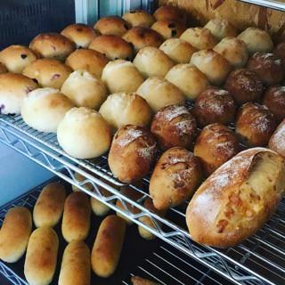 5月15日 本日のパン