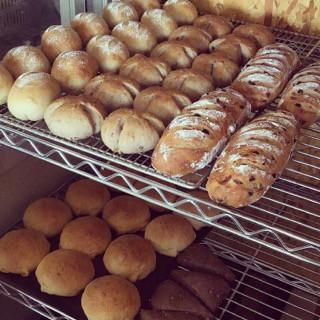 5月29日 本日のパン