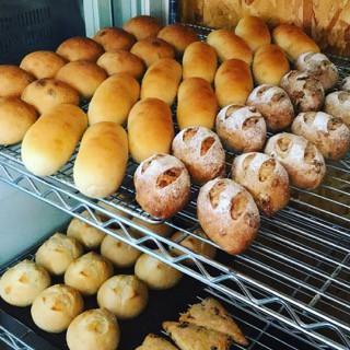 11月14日 本日のパン