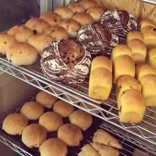 11月17日 本日のパン