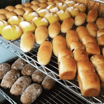 11月24日 本日のパン