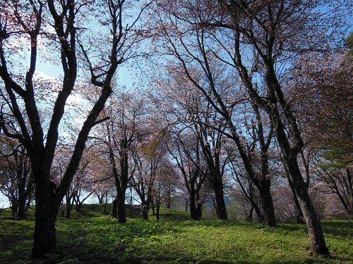 5月10日 滝上町 今日の濁川公園